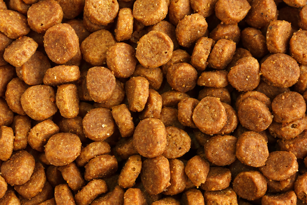 Παραγωγή και εμπορία ζωοτροφών